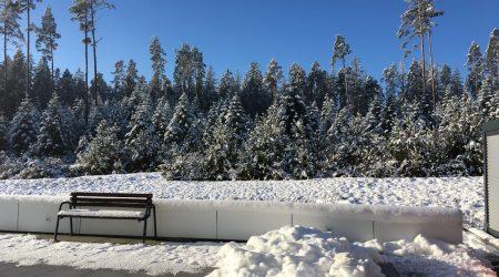 Winter in Mönchweiler